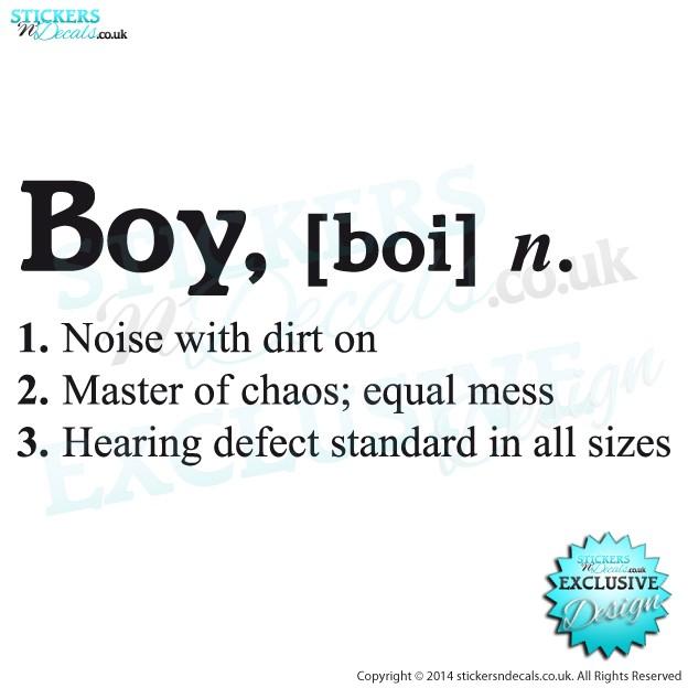 Boy - [ Boi ] Dictionary Description - Vinyl Wall Art - Vinyl Wall Decal - Window Sticker - Wall Decor