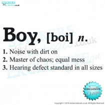 Boy - [ Boi ] Dictionary Description - Vinyl Wall Art - Vinyl Wall Decal - Window Sticker - Wall Decor